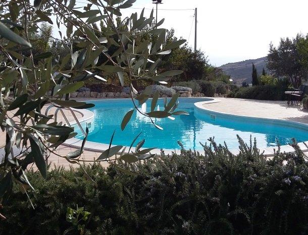 agriturismo-raffo-naro-sicilie-zwembad-olijfboom.jpg