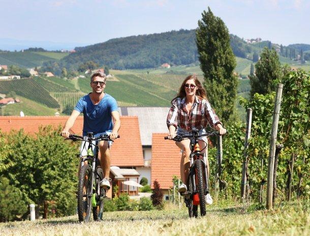 weingut-dreisiebner-steiermark-fietsen.jpg