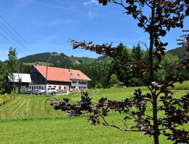 am-hof-jungholz-oostenrijk-ligging-boerderij.jpg