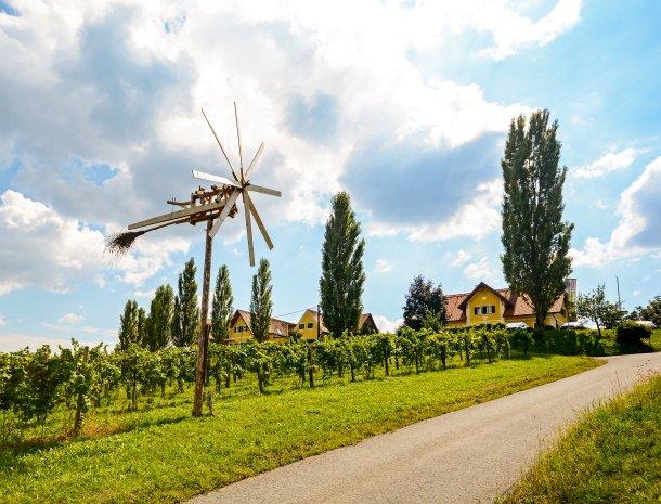 wijngebied-klapotetz-steiermark-specifiek-detail.jpg