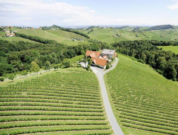 weingut-dreisiebner-wijngaarden-steiermark.jpg