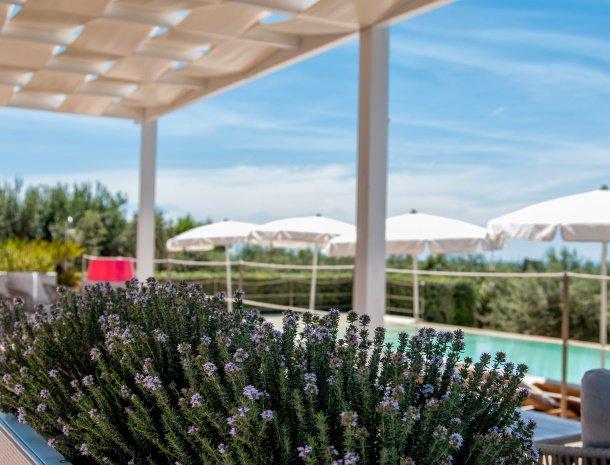 relais-casina-miregia-lavendel-zwembad.jpg