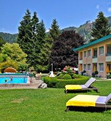 birkenhof-appartementen-dobriach-millstattersee-zwembad.jpg