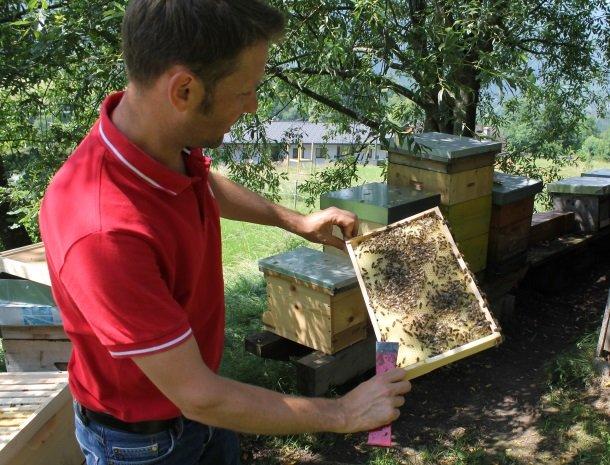 Kronhofer-Presseggersee-bijen en imker