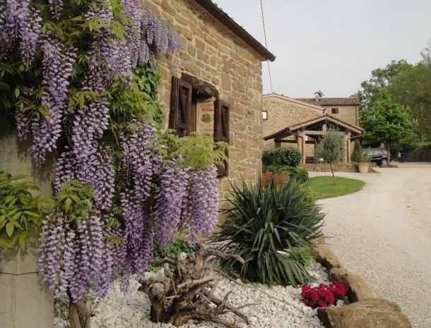 agriturismo alla vecchia quercia-pergola-bloemen.jpg
