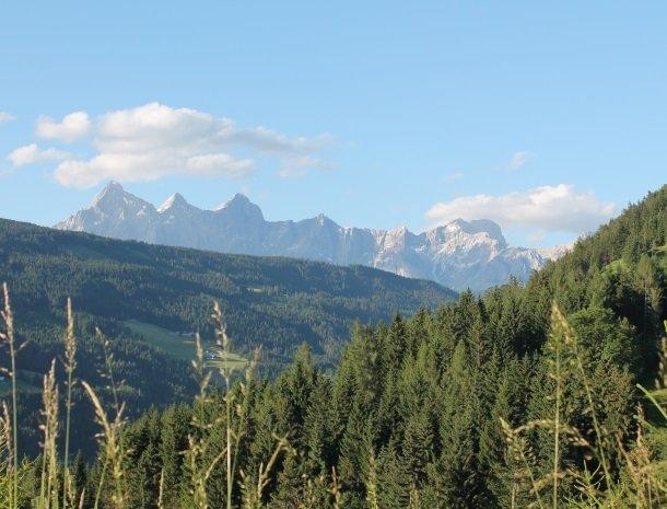 gastehaus elizabeth-bergen.jpg